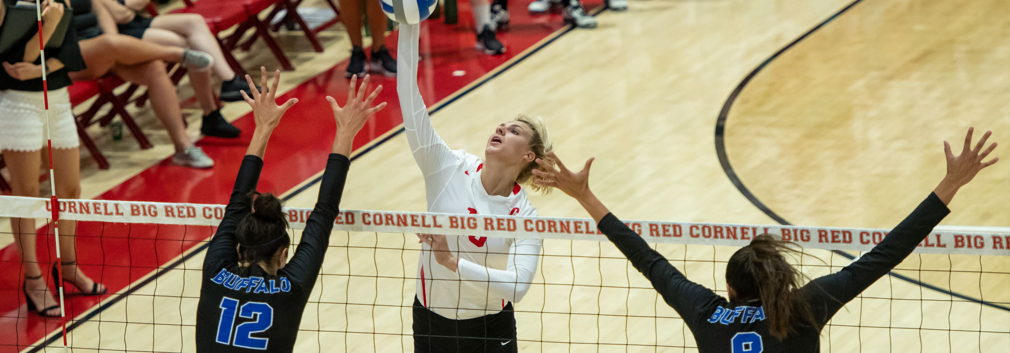 Volleyball Heads To Crusader Classic For Final Ivy Prep