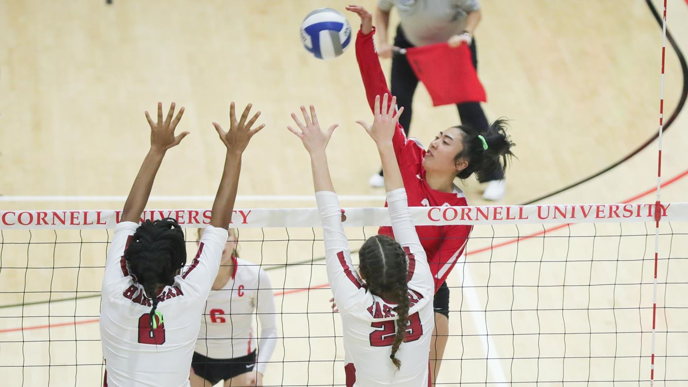 First Place Volleyball Takes On Brown Yale Cornell University Athletics