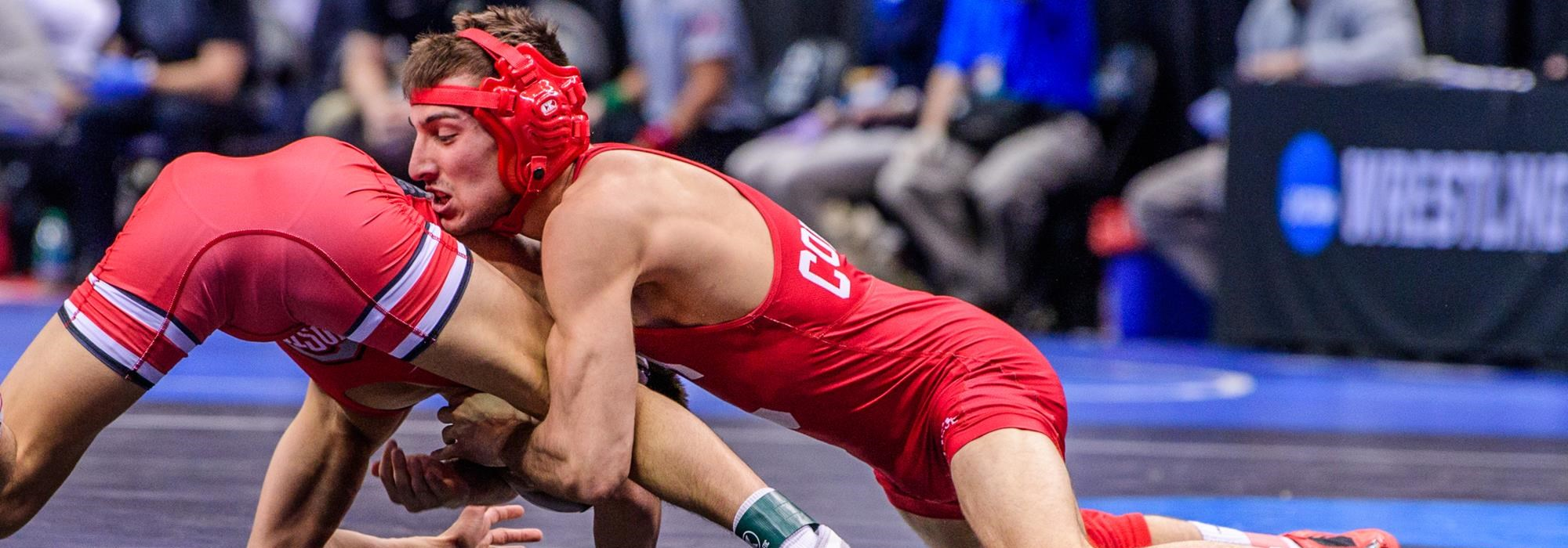 quality design 7108d 22090 Wrestlers compete in the Prelim round at the 2019 NCAA Division 1 Wrestling  Championships at the