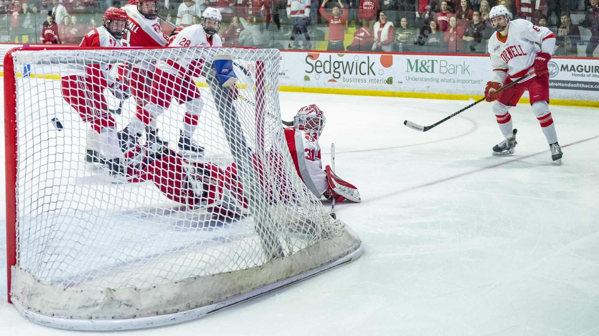 Alex Green watches his seventh goal of the season hit the net during the Cornell men's hockey team's ECAC Hockey game against Rensselaer on Feb. 15, 2020 at Lynah Rink in Ithaca, N.Y. (Eldon Lindsay/Cornell Athletics)