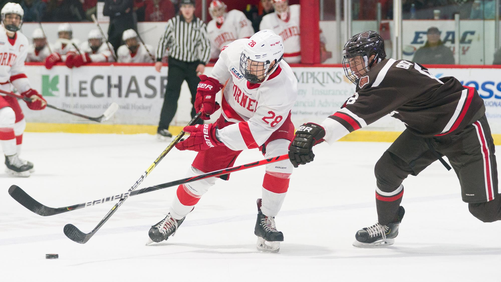 Brenden Locke protects the puck during the Cornell men's hockey team's 4-1 victory over Brown in an ECAC Hockey and Ivy League game on Nov. 8, 2019 at Lynah Rink in Ithaca, N.Y. (Dave Burbank/Cornell Athletics)